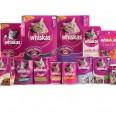 Free Whiskas Cat Food