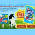Free Assorted Dog Treats