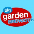 Free RSPB Garden Birdwatch Pack